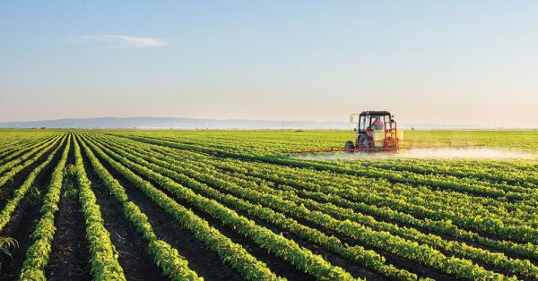According to the International Labour Organisation, agriculture is the world's most dangerous industry.